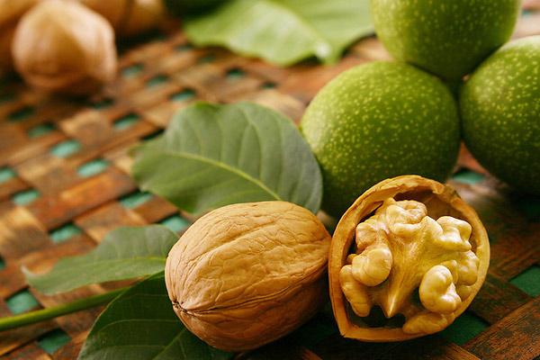 Грецкий орех завоевал признание людей с давних времён. Его применяют в кулинарии, народной медицине и промышленном производстве