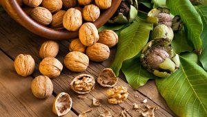 Частое употребление грецких орехов положительно влияет на гормональный фон. Медики рекомендуют продукт женщинам, перенесшим большие потери крови: после операций, родов или обильных менструаций
