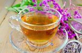 Иван-чай – вкусный напиток от всех недугов. Полезные свойства и показания к применению