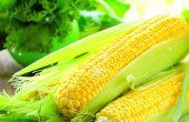 Кукуруза — польза и вред, рецепты народной медицины