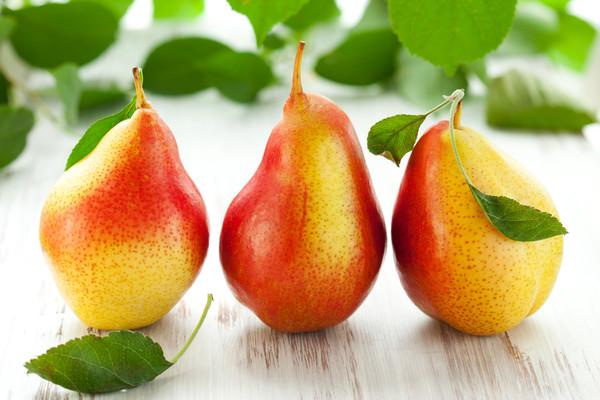 Груша – один из наиболее известных, после яблок, фруктов. Первые упоминания о грушах были замечены еще в древнегреческой мифологии, когда в «Одисcее» Гомер описал превосходные плоды, которые росли в саду персидского царя