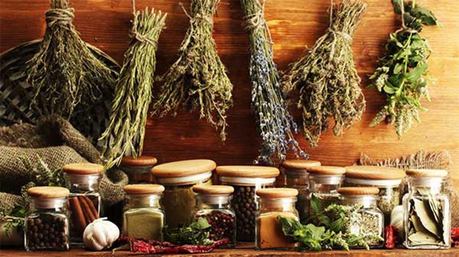 Травы лечение народные рецепты