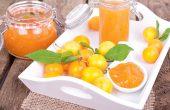 Алыча — польза и вред для организма, свойства, противопоказания, народные рецепты