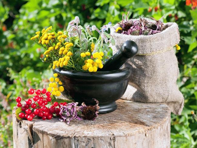 Для снятия симптомов и лечения причин боли в Солнечном сплетении, применяют настои и чаи из лекарственных растений, но использовать их можно только после разрешения лечащего врача