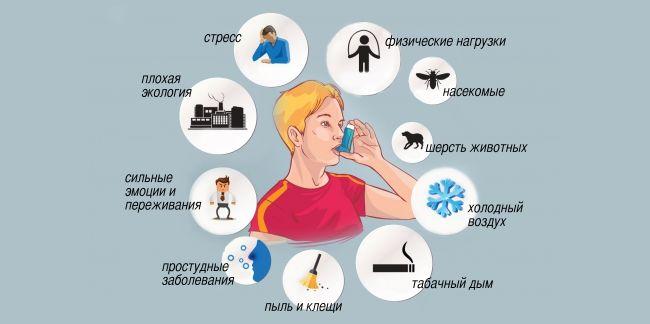 Причины бронхиальной астмы заключаются в повышенной чувствительности бронхов к внешним раздражителям