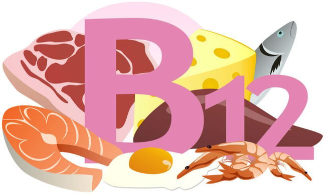 При мегалобластной анемии в организме отмечается недостаток витамина B12