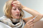Что такое геморрагическая лихорадка с почечным синдромом? Описание опасного вируса, симптомы и лечение