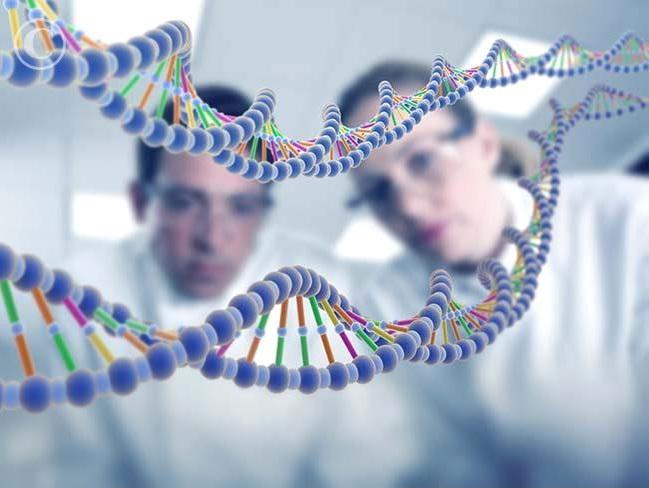Возникает синдром из-за мутации всего одного гена, который отвечает за правильное формирование костей в лицевой части