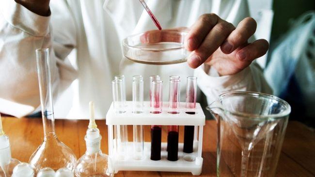 Повышенные лимфоциты в крови - это тревожный сигнал