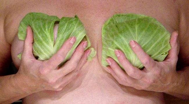 Самый простой способ справиться с маститом - компрессы из листа капусты или лопуха