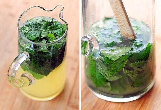 Чай из листьев мелиссы, поможет при многих заболеваниях