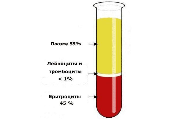 Анализ крови на СОЭ точно определит количество кровяных фрагментов