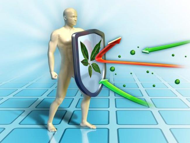 Элеутерококк наиболее эффективен при низком иммунитете и снижении общего тонуса организма, вместе с тем его успешно применяют для лечения большого количества других опасных заболеваний