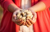 Peanut – benefit and harm to the body, in diseases of the effectiveness of