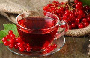 При простудных заболеваниях у ребенка - чай с калиной станет незаменимым средством лечения, поскольку не имеет противопоказаний и побочных эффектов
