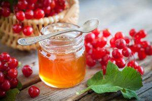 В лечебных целях для приготовления различных средств используют как ягоды красной калины, так и цветы, листья и даже косточки