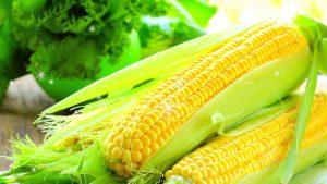 Мало кто знает, что кукуруза - это не только вкусное блюдо, но еще и очень полезный для организма продукт