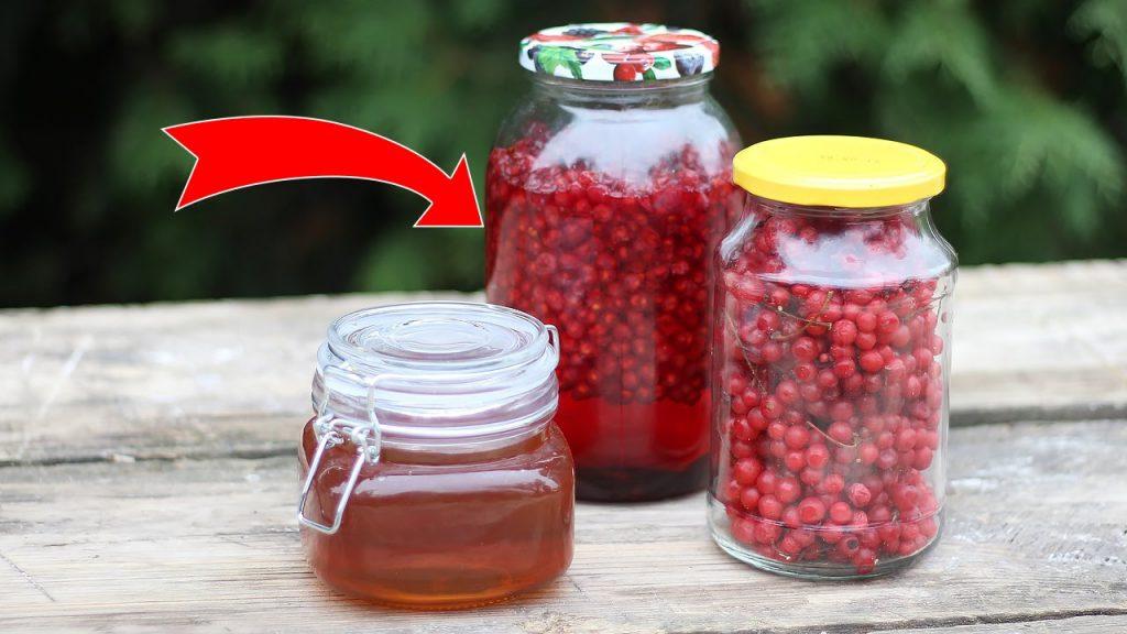 Приготовить лечебную настойку из плодов лимонника, следуя нашему рецепту, может каждый у себя дома