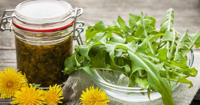 Варенье из одуванчиков поможет очистить организм от токсинов, улучшить состояние кожи, нормализовать аппетит и обменные процессы