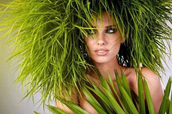 Регулярное ополаскивание волос хвощом восстанавливает структуру волос
