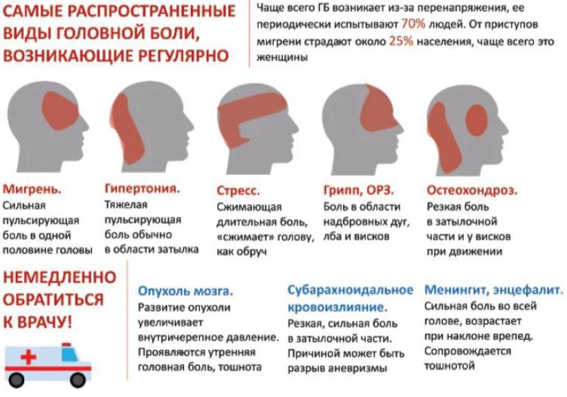 На фото показана инфографика самых распространенных видов головной боли, возникающих регулярно у человека, как у мужчин, так и женщин. Показаны случаи, когда нужно немедленно обратиться к врачу.