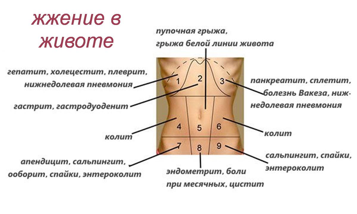 На фото показаны возможные причины боли в разных частях живота у женщины, жжение в животе и сопутствующие заболевания.