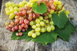 Виноград рекомендуется употреблять не только для лечения, но и для профилактики заболеваний различных органов и систем организма человека
