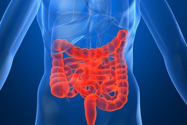Пробиотики применяют для лечения синдрома раздраженного кишечника