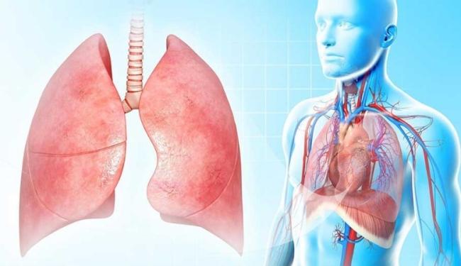 Бронхомунал - эффективное средство для лечения и профилактики заболеваний дыхательных путей