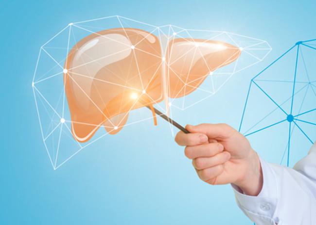 Галстена обладает гепатопротекторным действием, поэтому эффективна для лечения различных патологий печени