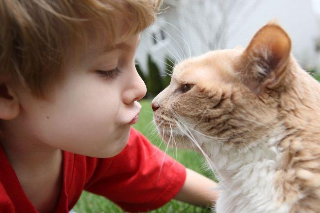 Глисты у детей - распространенное паразитарное заболевание, которое может вызвать множество осложнений. Лечить гельминтоз должен врач