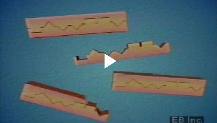 ДНК-отпечатки пальцев: полимеразная цепная реакцияконкретные сегменты ДНК амплифицируются (копируются) в лаборатории с использованием методов полимеразной цепной реакции (ПЦР)Encyclopædia Britannica, Inc.