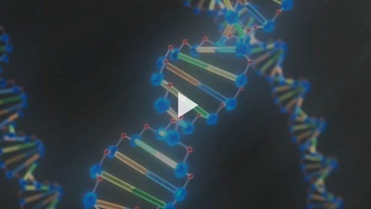 Джеймс Уотсон и Фрэнсис Крик произвели революцию в изучении генетики, когда открыли структуру ДНК. Encyclopædia Britannica, Inc.
