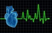 Кардиолог. Кто такой врач-кардиолог и какие заболевания сердца лечит?