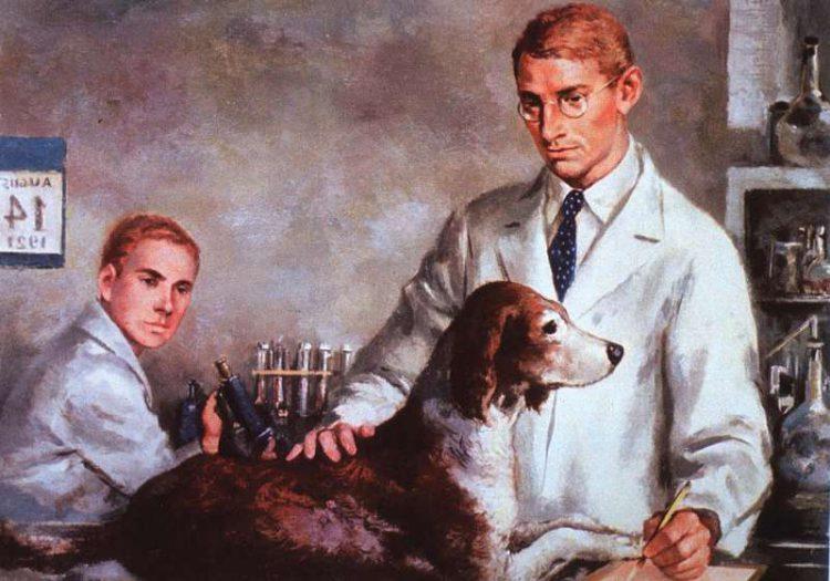 Инсулин, открытие. Иллюстрации канадских ученых Фредерика г. Бантинга и Чарльза Х. Беста в лаборатории, тестирование инсулина на диабетической собаке, 14 августа 1921 года. Предоставлено Национальной медицинской библиотекой.