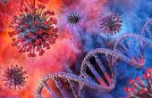 Минимизация рисков возникновения и заражения коронавирусом COVID-19