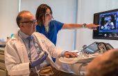 Кто должен проводить ультразвуковые исследования в гинекологии?
