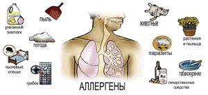 Причины астмы заключаются в повышенной чувствительности бронхов к внешним раздражителям