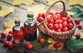 Боярышника настойка – инструкция, показания, состав, способ применения, лечебные свойства