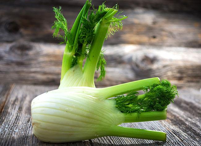 Фенхель обладает огромнейшим количеством витаминов, минералов и полезных веществ, практически не имеет ограничений и побочных эффектов, он является на редкость нужным растением