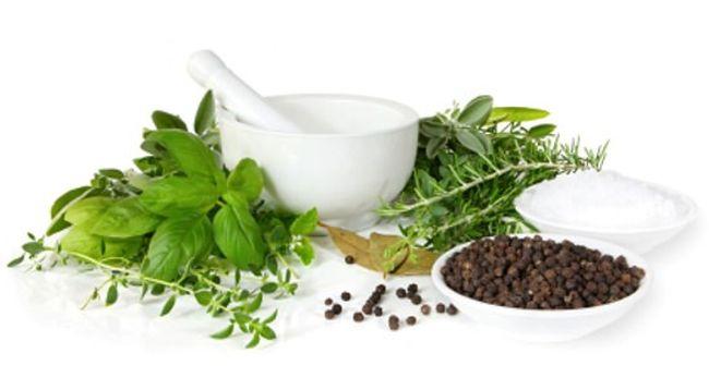 Значительно улучает состояние больного гастродуоденитом отвар свежей мяты