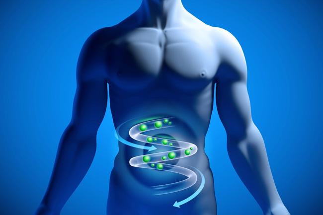 Газы в кишечнике представляют собой чрезвычайно распространенное явление, возникает это состояние из-за переедания или употребления продуктов с повышенным содержанием клетчатки