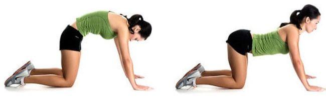 Гимнастические упражнения при остеохондрозе грудного отдела позвоночника