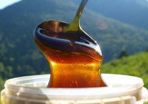 Гречишный мед - это очень полезный и питательный продукт растительного происхождения, он содержит огромное количество витаминов необходимых каждому человеку, чтобы оставаться здоровым