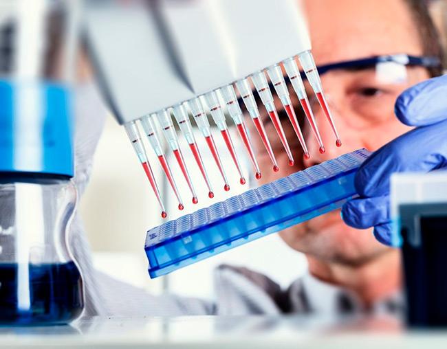 ИФА — это современный диагностический метод, который позволит уже на ранних сроках заболевания выявить антитела к инфекции