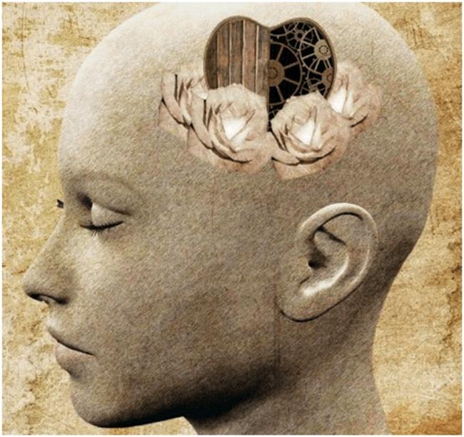 Галоперидол устраняет стойкие изменения личности, бред, галлюцинации, мании, усиливает интерес к окружающему