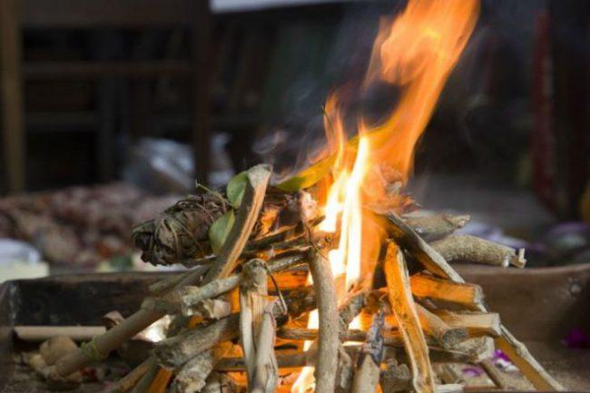Отдыхая у костра, можно отпугнуть насекомых, бросая в огонь еловые или сосновые шишки