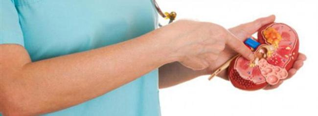 Наиболее эффективным и щадящим методом удаления конкрементов считается дробление ультразвуком