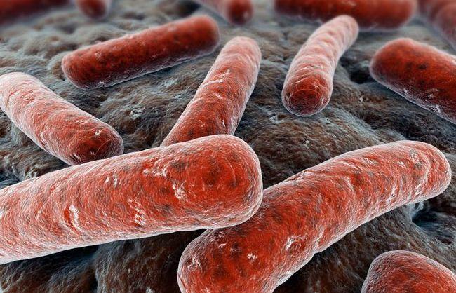 Клебсиелла у грудничка – это увеличенное количество микроорганизмов, которые присутствуют в здоровой кишечной микрофлоре и некоторых других частях тела