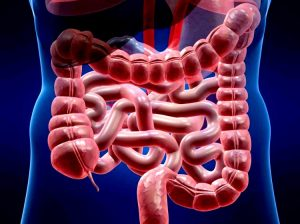 Очень часто врачи используют кружку Эсмарха для очищения кишечника в лечебных целях